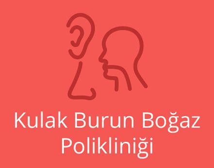 Kulak, Burun, Boğaz( KBB)