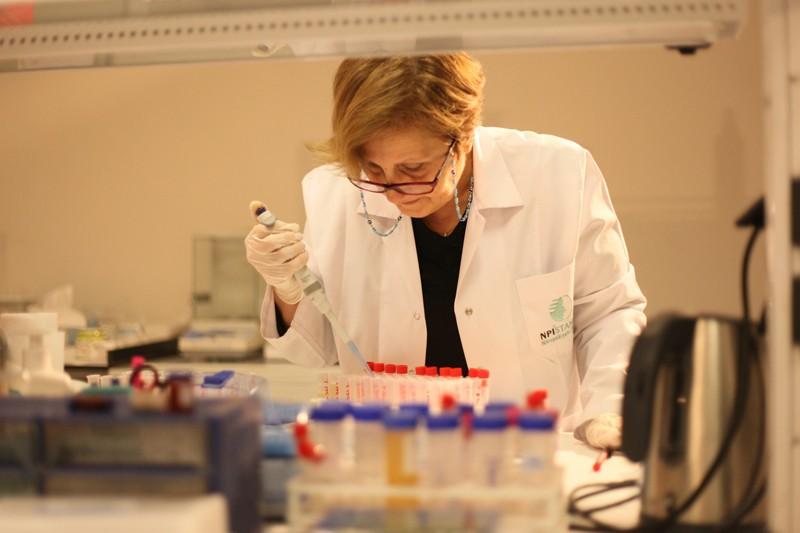 Genotipleme Çalışmaları
