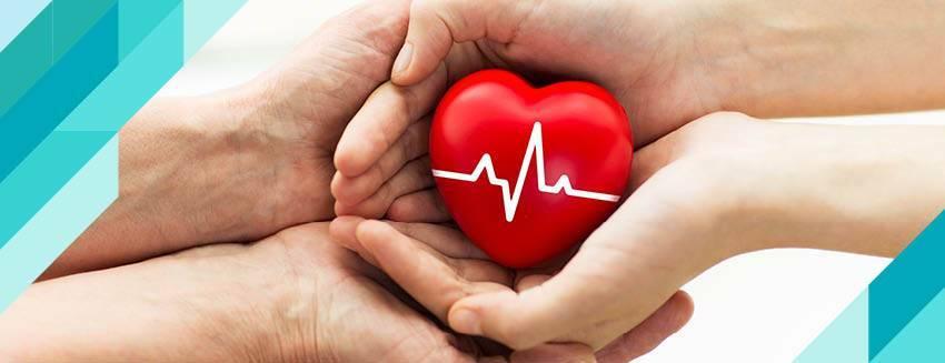 Organ Bağışı Nedir, Nasıl Gerçekleştirilir