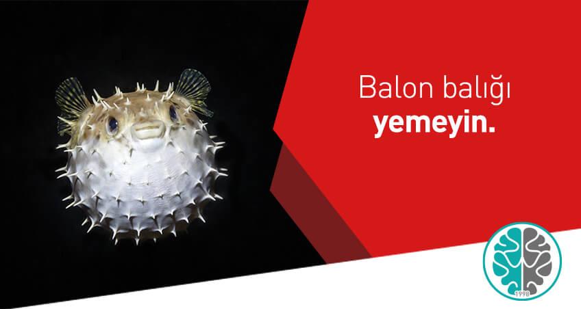 Balon balığı yemeyin